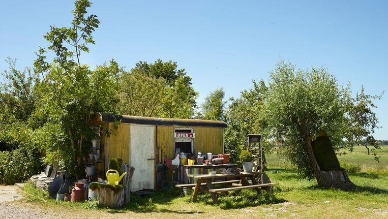 Zorgboerderij/bio vleesbedrijf De Eilandstal, Broek in Waterland Beeld Henk Wildschut