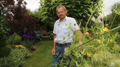 Romantische tuin in Waanrode is inspiratiebron voor jong en oud
