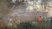 Loods met landbouwvoertuigen vat vuur bij groenten- en fruitteler