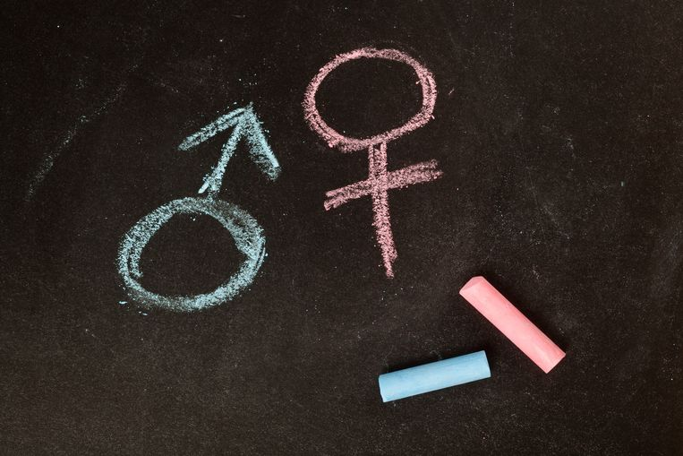 Male and female symbols drawn using chalk on a chalkboard Beeld Getty Images/iStockphoto