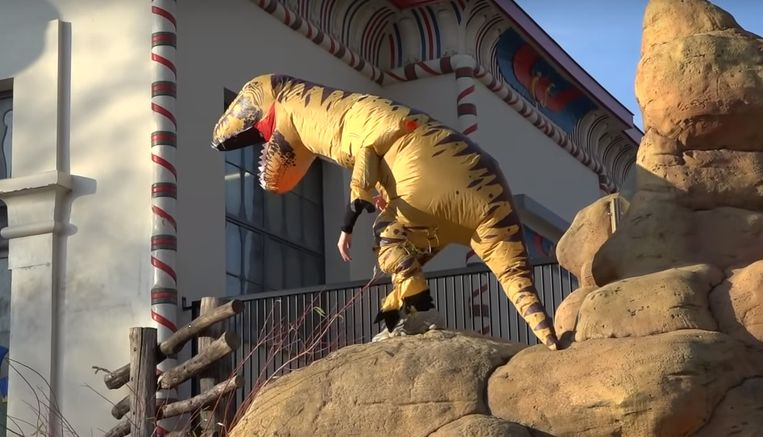 De Antwerpse Zoo is niet te spreken over de actie van twee Nederlanders die in een filmpje op YouTube laten zien.