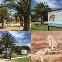 L'expo Photo Nature sur la promenade du front de mer d'Argelès