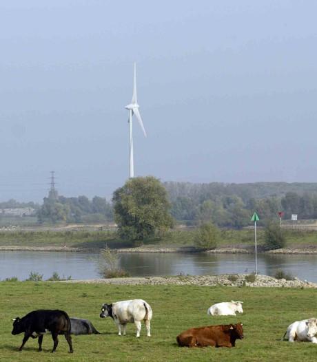 'Overlast van windmolens beperken belangrijker dan geld'