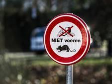 'Wijkbewoners Zandweerd hebben belangrijke rol bij bestrijden rattenprobleem'