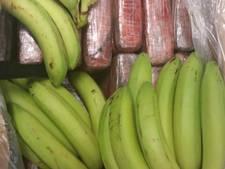 Politie vindt 12 kilo cocaïne tussen lading bananen in Hedel