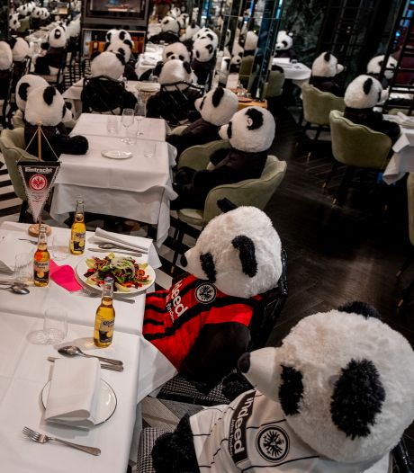 Pandamie in Duits restaurant