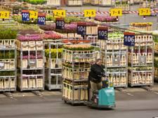 Groenten en bloemen breken exportrecords