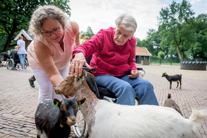 Ouderen van de Eschpoort bezoeken de kinderboerderij in het Wooldrikspark en genieten van het uitstapje.