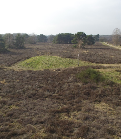 Mogelijk honderden nieuwe grafheuvels ontdekt op de Veluwe