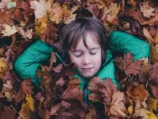 Dit is waarom we ons verheugen op de herfst
