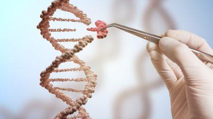 """DNA is de nieuwe harde schijf van de toekomst: """"Het hele internet past in één schoendoos"""""""