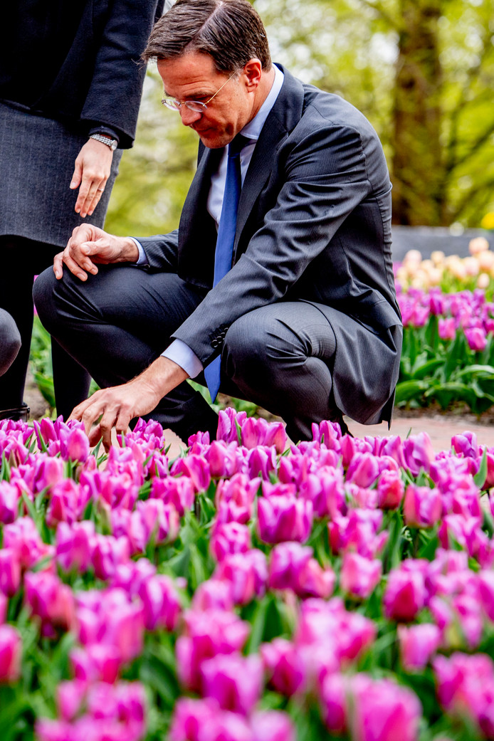 Op woensdag 17 april bezocht minister-president Rutte de Keukenhof in Lisse voor het vernoemen en dopen van een nieuwe tulp. Hij deed dat als eerbetoon aan een veteraan uit de Tweede Wereldoorlog, ter ere van 75 jaar bevrijding.