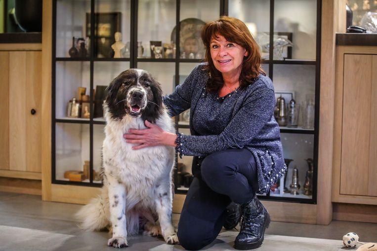 Laika verblijft tijdelijk bij vrijwilligster Sabine van Paemel en stelt het goed