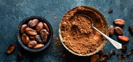 Zo gaat een cacaoceremonie: 'Wat ik voel is hoogstens irritatie'