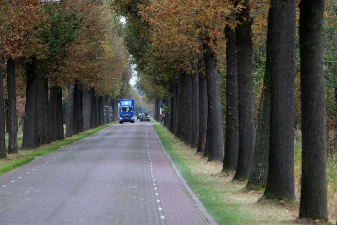 De Broekdijk