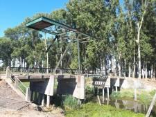 Historische Hankse brug krijgt opknapbeurt: 'Deze brug vertelt het verhaal van de Biesbosch'