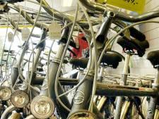 Fietsenwinkels Hans Struijk in Eindhoven en Geldrop te koop