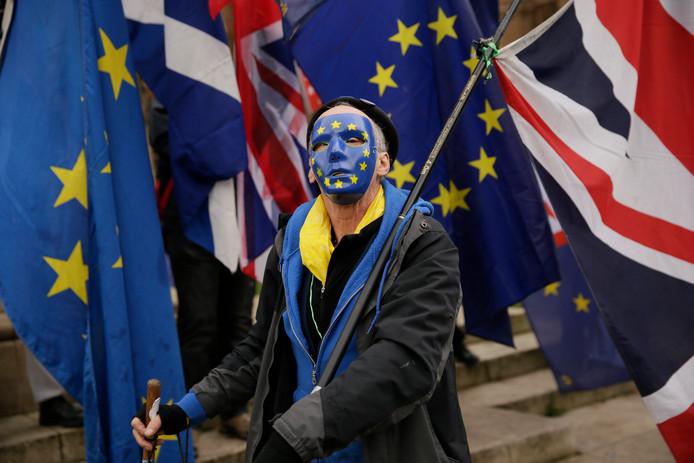 Een anti-brexitdemonstrant.