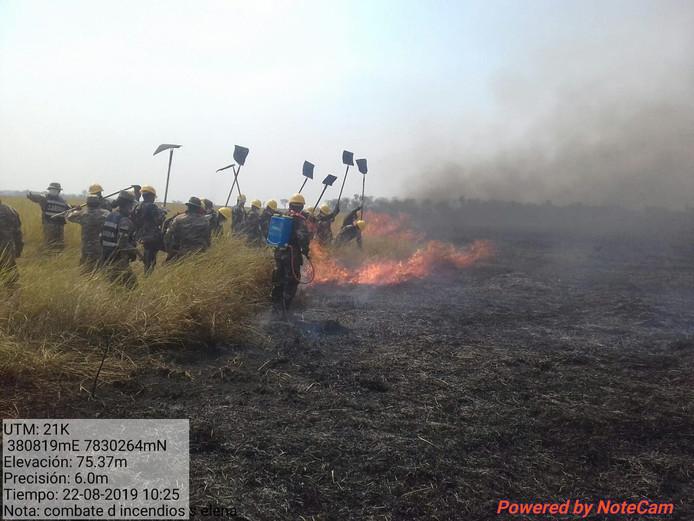 WWF-Bolivia-vrijwilligers kloppen het vuur uit.