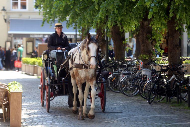 Brugge koets op Simon Stevinplein