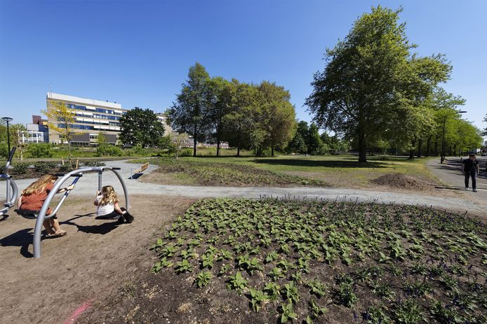 Het gebiedje is, op initiatief van buurtbewoners die ook mee dachten over het ontwerp, de afgelopen weken door de gemeente omgetoverd in een aantrekkelijk parkje.