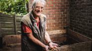 Elk zijn hobby: deze man kweekt neushoornkevers