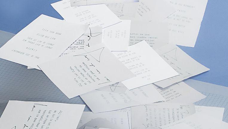 Gedichten van LarGedichten van Lars van der Werf en Janneke Knüppe. Beeld Studio V