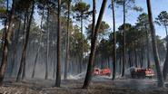 Bosbranden teisteren Zuid-Europa