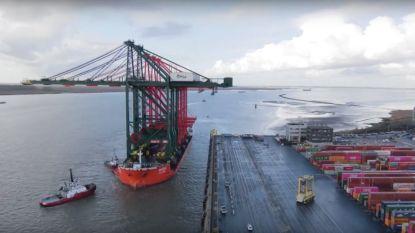 Spectaculaire timelapse toont hoe grootste containerkranen Antwerpse haven binnenvaren
