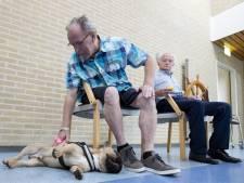 Therapiehond Teddy doorbreekt de neerslachtigheid in Hellendoorn