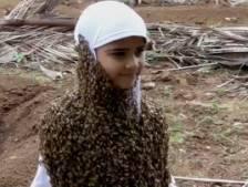 Le geste fort d'une fillette pour la Journée mondiale des abeilles