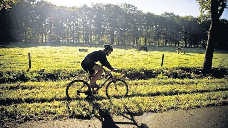 Een fietser rijdt in natuur- en ontspanningsgebied Lage Vuursche voor het 'mountainbikegevoel' door een greppel. © ANP Beeld