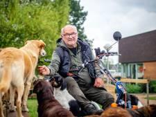 Demente ouderen kunnen dagelijks met honden wandelen, dankzij Jeroen