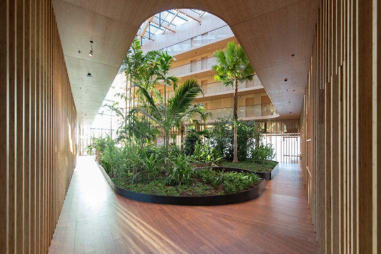 Hotel Jakarta is ontworpen rond een subtropische binnentuin. Beeld SeARCH