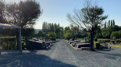 Gemeente Dilbeek gaat in zee met Pro Natura voor onderhoud begraafplaatsen
