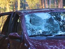 Meisje (8) zwaargewond na tak door ruit rijdende auto