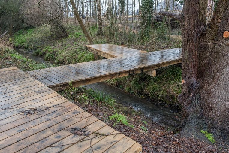 Het park krijgt houten wandelpaden.