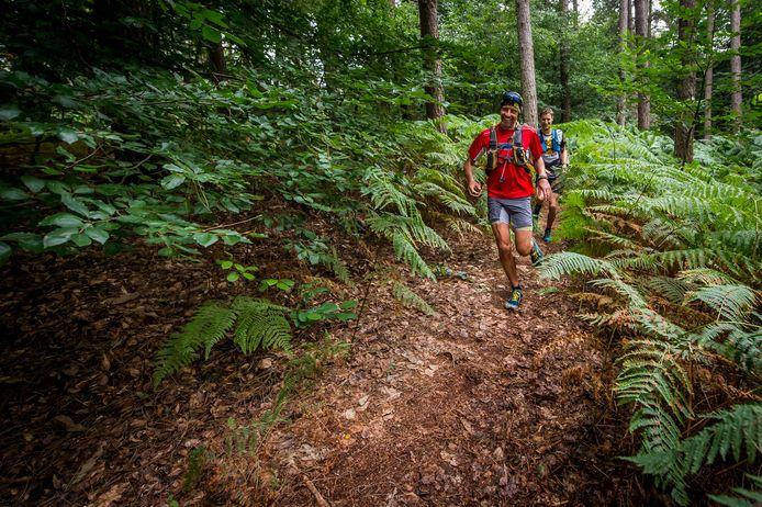 Training trailrun in Montferland
