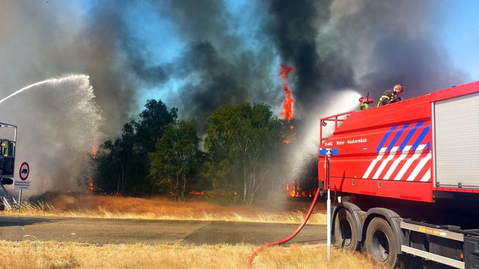 Zeer grote natuurbrand in Budel.