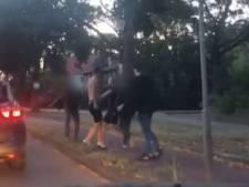 Wie zijn deze mannen die een filmende man bewusteloos sloegen in Deventer?