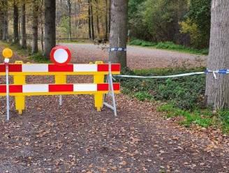 Parkings rond Drongengoed open, maar aan alle andere bossen toch gesloten: Groen dient klacht in