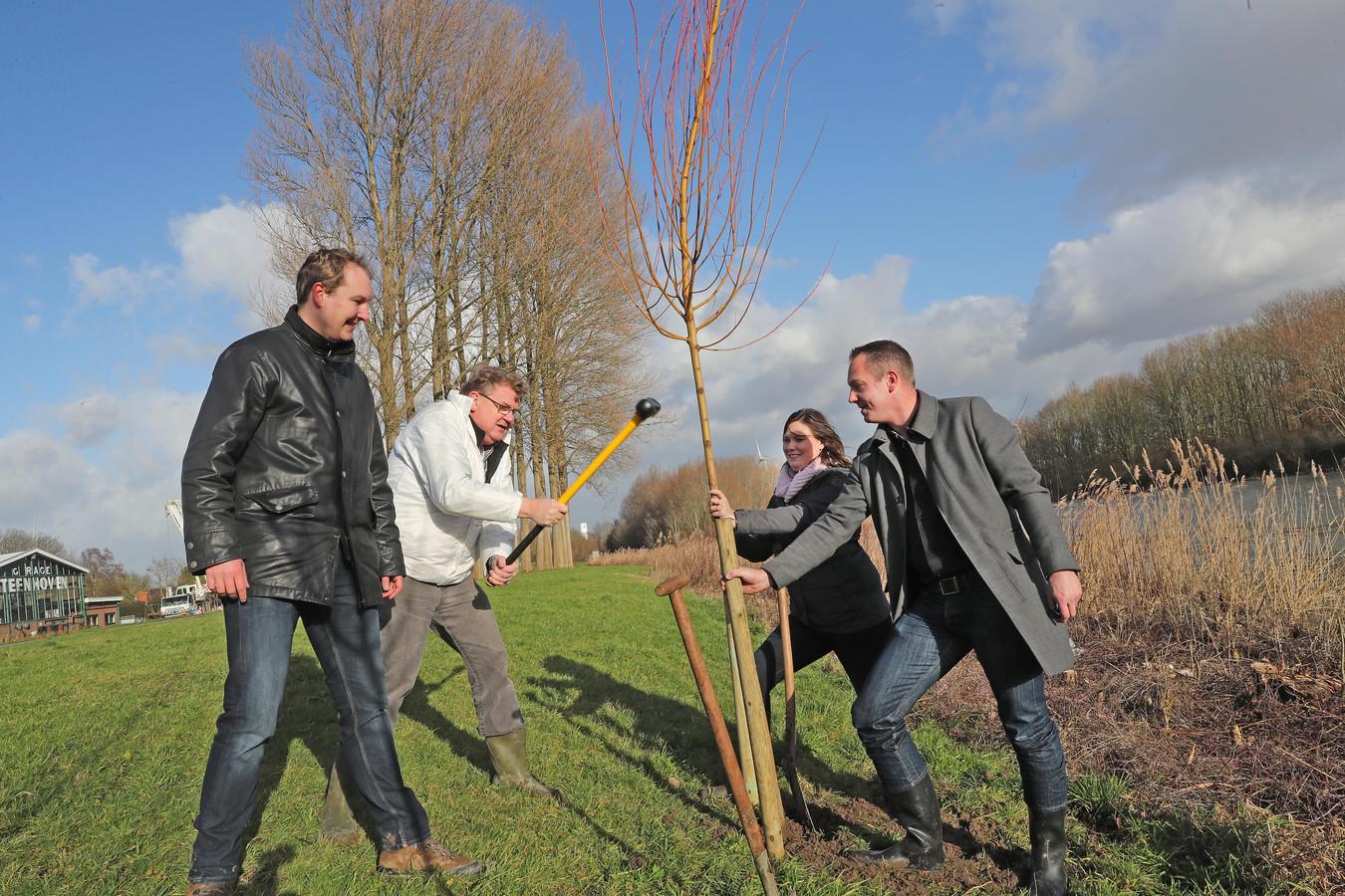 Rogier van Veen (uiterst rechts) plant nieuwe wilgen in Heenvliet.