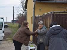 Naar Eindhoven meegelifte kat Rudi veilig terug bij baasje in Hongarije