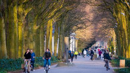 Nieuwe richtlijnen in Rivierenhof: maximum twee uur wandelen, bal- en groepspelen verboden