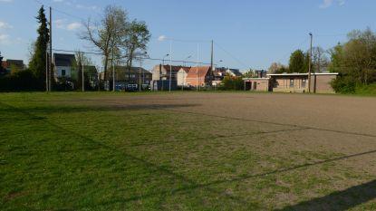 Rugby Club Leuven wacht al meer dan jaar op bouwvergunning voor synthetisch veld