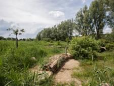 Politie in Zutphen denkt te weten wie kinderen in speeltuinen lastig viel