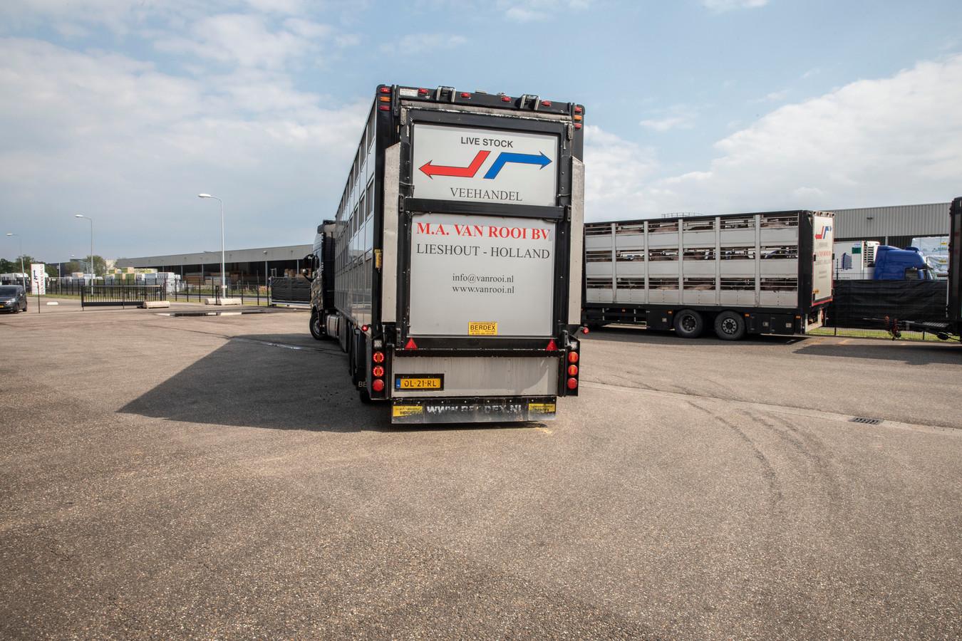 Varkentransporten bij van Rooi Meat aan de Roggedijk in Helmond.