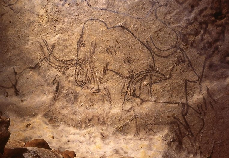 Grotte de Rouffignac. Beeld