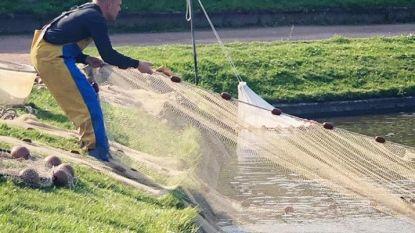 Restauratie Franse vijver in park gaat deze maand van start