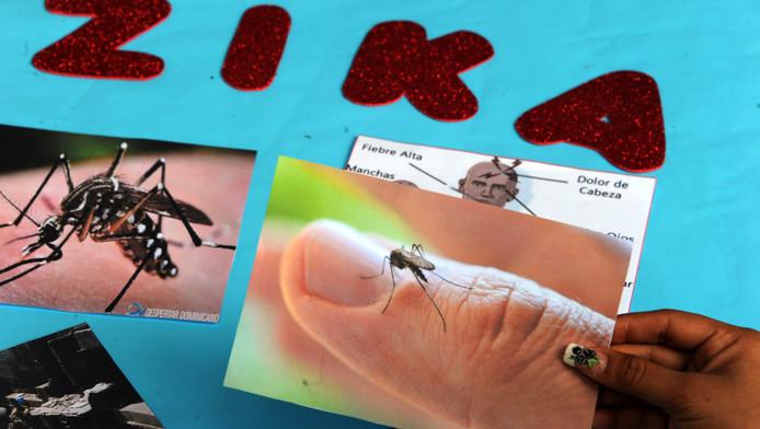Studenten maken posters voor een campagne tegen verspreiding van het Zikavirus